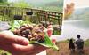 Cách Hà Nội 40km có địa điểm cho con trải nghiệm ở nhà đồi, nhặt hạt dẻ trong rừng y như truyện cổ tích mà không cần tới nước Úc xa xôi