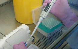 Nga phát hiện chất chống ung thư khi nghiên cứu thuốc trị COVID-19