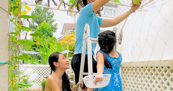 """""""Soi"""" nhất cử nhất động của sao Việt (19/11)"""