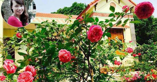 Khu vườn rộng gần nghìn m² đầy hoa và rau xanh của cô giáo dạy toán