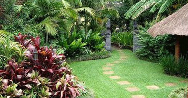 Cách trồng cây phong thủy trong vườn hút tài lộc
