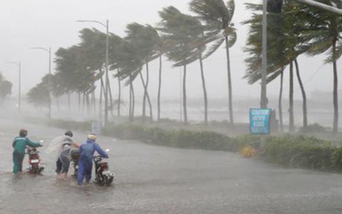 Tin bão mới nhất: Bão số 8 tiếp tục mạnh lên, giật cấp 15