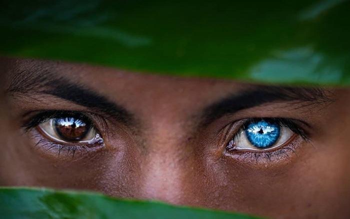 Sự thật đằng sau những đôi mắt xanh tuyệt đẹp phát sáng trong đêm tối của người dân bộ tộc
