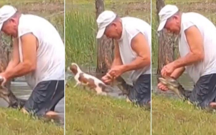 Cụ ông 74 tuổi tay không cậy mồm cá sấu giải cứu chó cưng