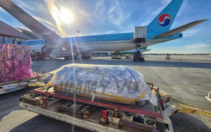 Toàn bộ hình ảnh linh cữu cố nghệ sĩ Chí Tài nằm giữa đường băng khi vừa về tới Mỹ