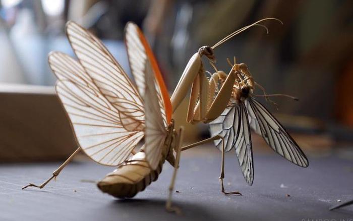 Chiêm ngưỡng côn trùng tre tinh xảo y như thật, người xem chỉ biết ...