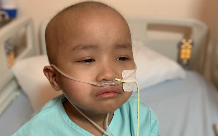 Bé 5 tuổi đang khỏe mạnh bình thường, bị đau bụng và sốt, đi khám ...