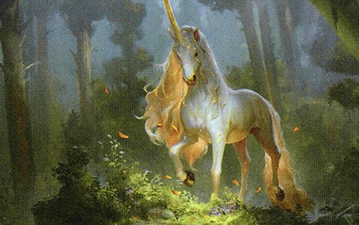 Bạn thích ngựa hơn hay kỳ lân hơn, điều đó sẽ cho biết bạn là người ...