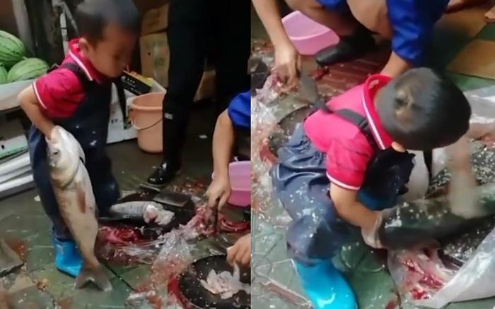 Hình ảnh cậu bé 7 tuổi ngồi giữa chợ sơ chế cá với tay nghề lão luyện ...