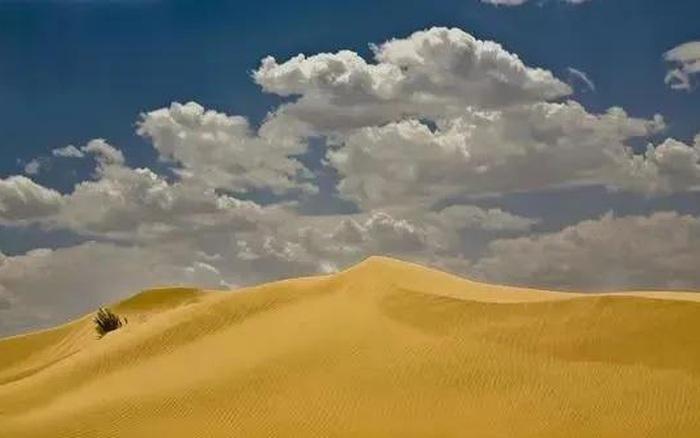 Đi tìm kho báu trên sa mạc rộng lớn bỗng gặp một nhóm người lạ mặt, ...