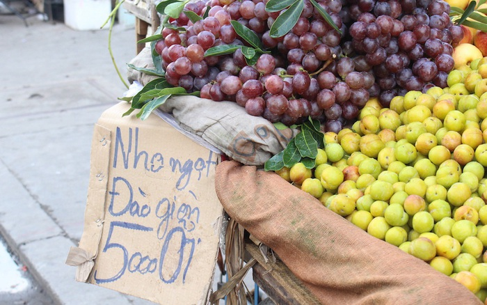 5 loại hoa quả Trung Quốc lẫn hàng Việt: Chỉ cần nhìn vào những điểm ...