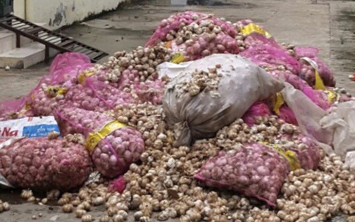 Đồng Tháp: Vứt hàng trăm bao tỏi có nhãn Trung Quốc xuống ...