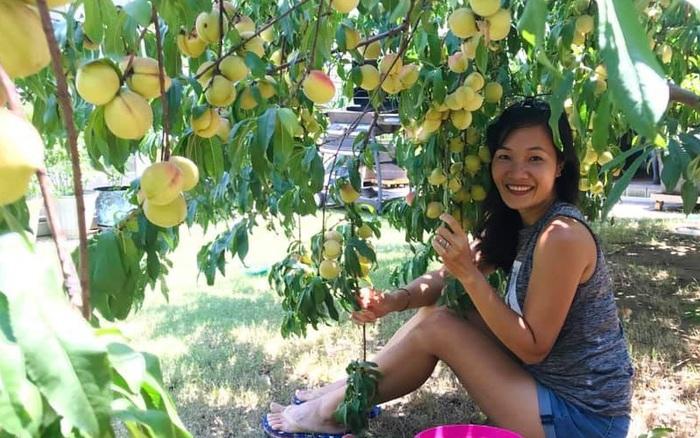 Cuộc sống bình yên của bà mẹ Việt ở Mỹ với hai đam mê vẽ tranh và làm vườn - kết quả xổ số đồng nai