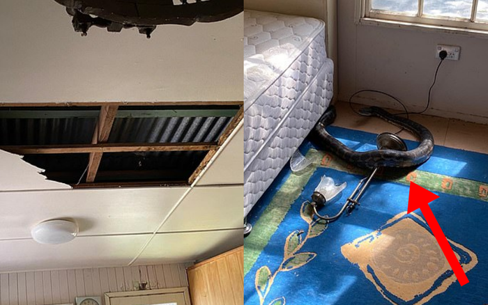 Trở về nhà, người đàn ông phát hiện trần nhà rơi xuống sàn do 2