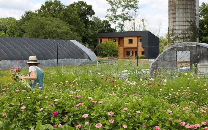 Độc đáo mô hình nhà ở kết hợp từ hai hộ gia đình: Người cho thuê vì