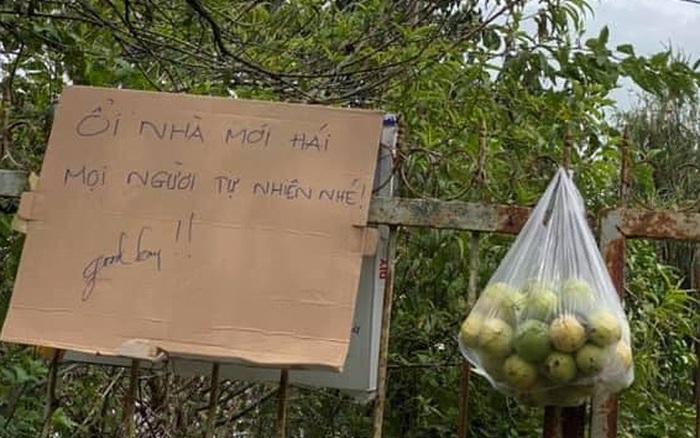 """Tấm bảng """"mời ăn ổi"""" đang gây sốt khắp thành phố Đà Lạt vì một hành động nhỏ nhưng lại quý lắm ở tình người"""