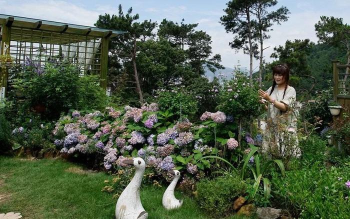 Người phụ nữ 40 tuổi cắt đứt liên lạc với chồng 7 tháng để cải tạo ngọn đồi cằn cỗi thành vườn hoa đẹp như trong mơ