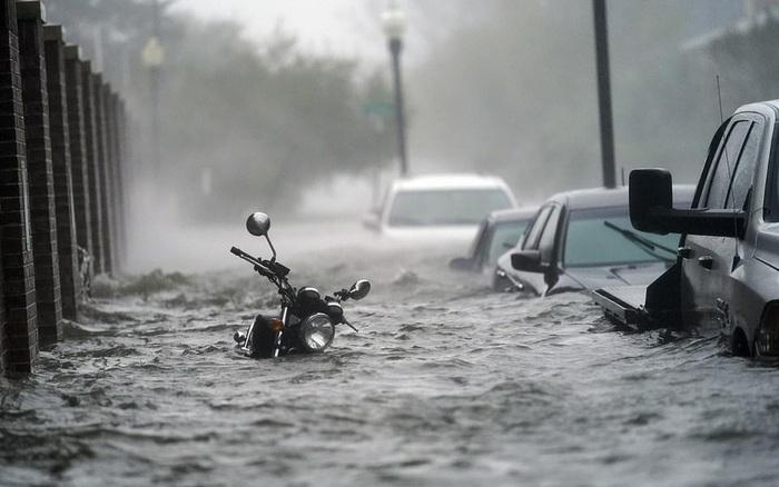 Bão Sally gây lụt lịch sử tại Mỹ, quật đổ cây cối, nhấn chìm đường phố trong biển nước