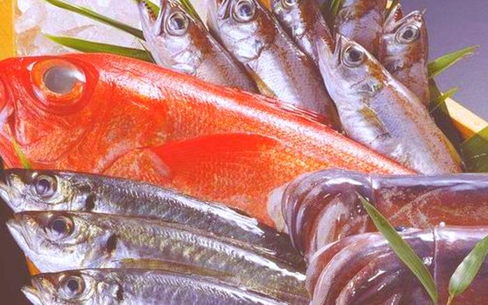 Hai loại cá này là