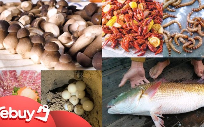 Bạn có biết những mặt hàng nào bị cấm bán trên thị trường Việt?