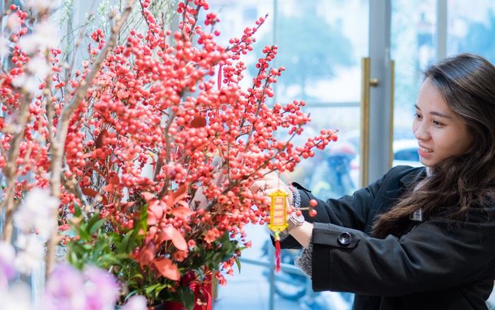 Cập nhật nhanh giá 6 loại hoa ngoại đang mở bán online