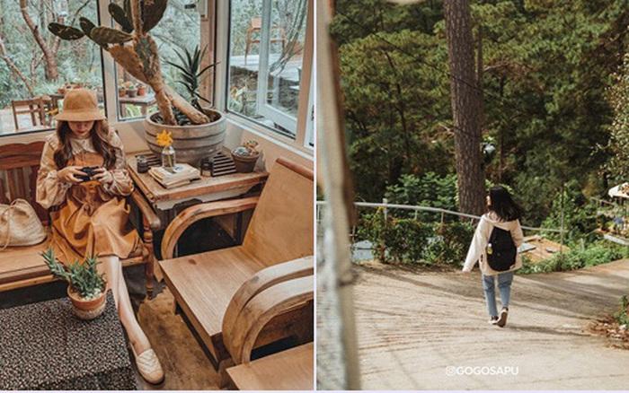 Đà Lạt có 1001 nơi xinh xắn, nhưng các cặp tình nhân lại mê mẩn tiệm cafe nằm ẩn giữa rừng thông với con dốc dựng đứng không dành cho người