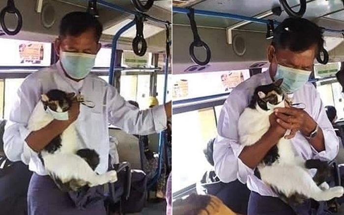Người đàn ông mang theo chú mèo lên xe bus, nhưng thứ trên mặt bé mèo mới khiến tất cả hành khách thích thú