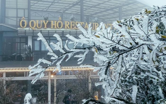 Chùm ảnh: Vẻ đẹp tinh khôi mà đầy khắc nghiệt của băng tuyết tại Sa Pa