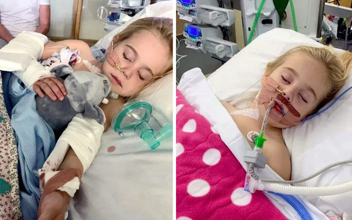 Bé gái 4 tuổi nhiễm vi khuẩn nguy hiểm tính mạng sau một lần đi chơi vườn thú