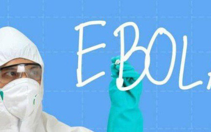 Nhật Bản vừa quyết định nhập khẩu... Ebola và rất nhiều virus chết người khác - quyết định ...