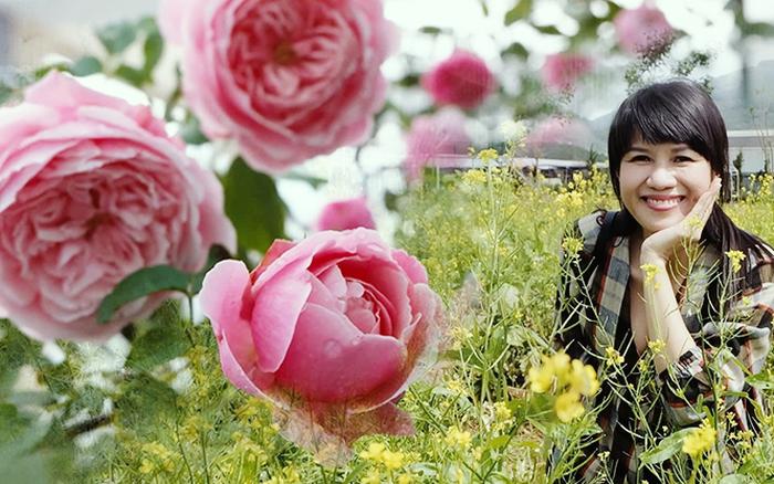 Sân thượng tràn ngập hoa hồng đua nhau khoe sắc ngọt ngào của nữ kế ... - kết quả xổ số quảng nam