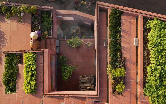 Vườn rau 7 bậc thang xanh tươi trên mái nhà của vợ chồng trung niên ở ... - xổ số ngày 17102019