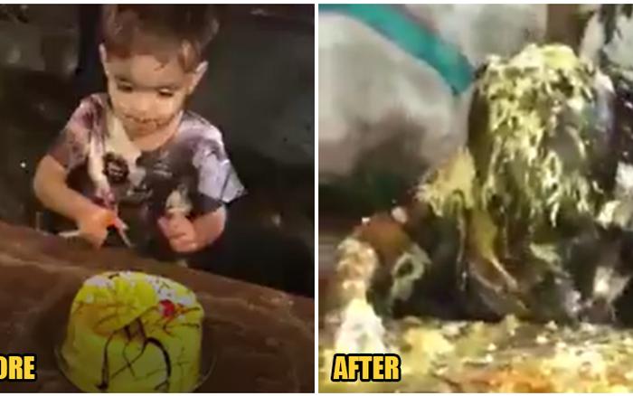 Màn cắt bánh sinh nhật hài hước của cậu bé 3 tuổi gây phẫn nộ