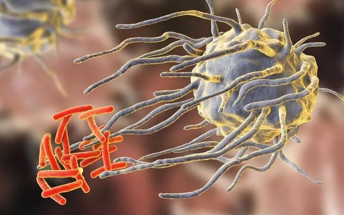 Thuốc kháng sinh đang ngày càng trở nên vô dụng, nhiều bệnh thông thường ...