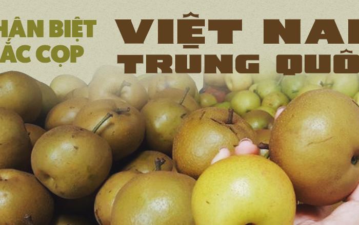 Người tiêu dùng sành sỏi chia sẻ cách cực hay để phân biệt mắc cọp Việt Nam ...