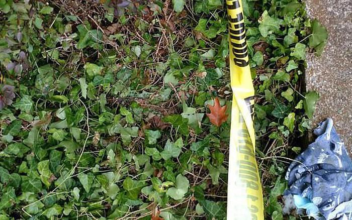 Bé trai 2 tuổi thoát chết trong gang tấc sau khi rơi xuống từ cửa sổ tầng 11