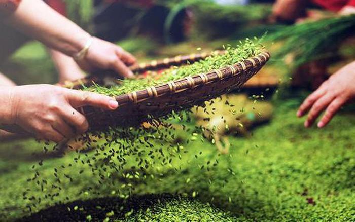 Cốm Làng Vòng năm nay tiếp tục giữ chân người tiêu dùng Việt