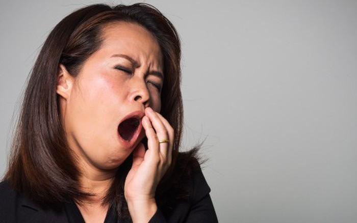 Trời mát dễ ngủ, và đây là 5 cách cho dân công sở không bị gật ...