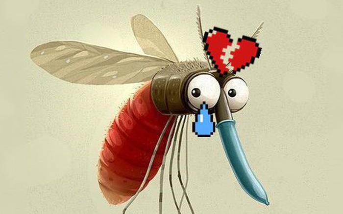 """Dự án tận diệt loài muỗi thất bại vì muỗi cái không chịu """"ân ..."""