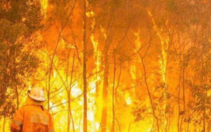 Hơn 100 đám cháy rừng ở Australia, nhiều đám có nguy cơ vượt kiểm soát