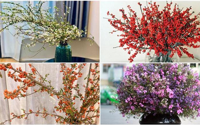Chọn hoa cắm Tết: bí quyết cho chị em chọn tuyết mai, thanh liễu, hồng gai, đào ... - xổ số ngày 13102019