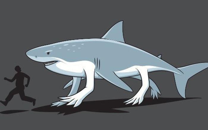 Giới khoa học phát hiện 4 loài cá mập biết đi bộ